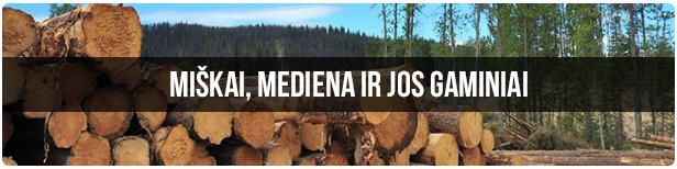 miskai-mediena